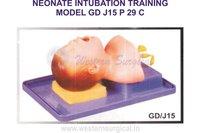 NEONATE INTUBATION TRAINING MODEL