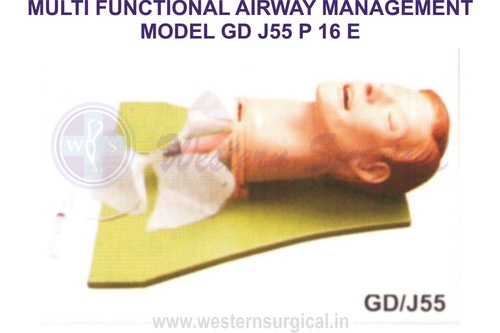 MULTI FUNCTIONAL AIRWAY MANAGEMENT MODEL