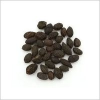 Saw Palmetto Oil 95%