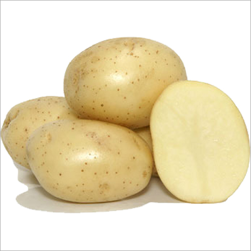 Atlantic Potato