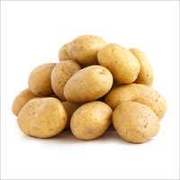 Badshah Potato