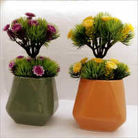 Indoor Ceramic Flower Pot