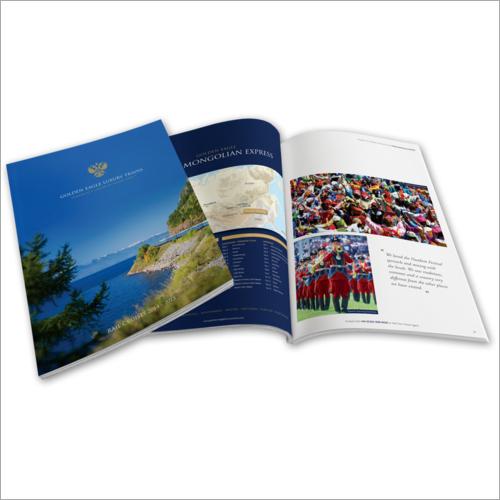 Professsional Brochure
