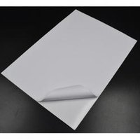 Rough Gloss coated papers
