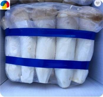 King Oyster Mushroom Fungus Spawn Substrate Grow Bags