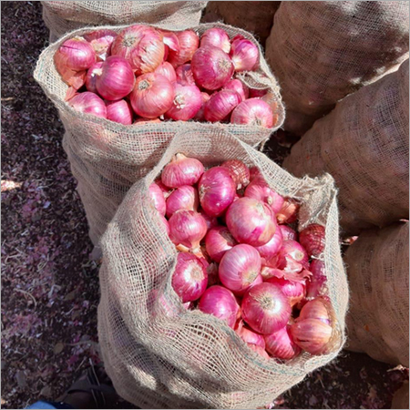 Golti Onion