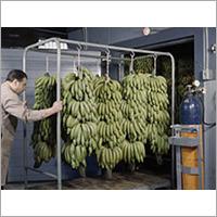 Fruits Ripening Chamber