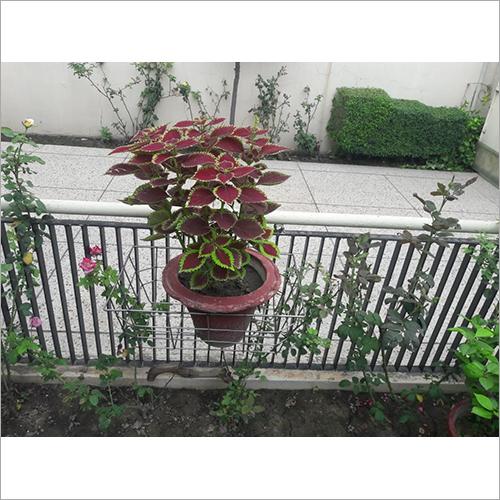 Stainless Steel Flower Pot Rack