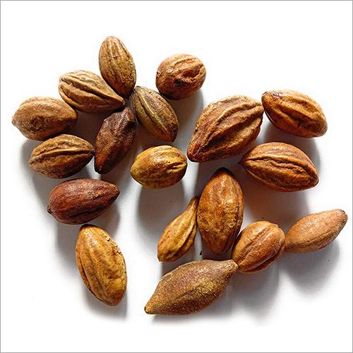 Haritaki Seed