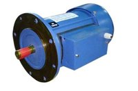 Flange Type Electric Motor