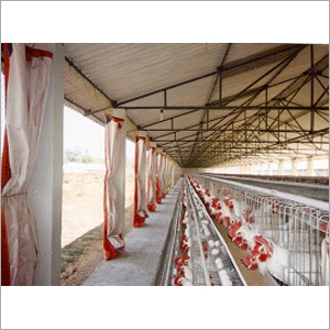 Indian Type Poultry Cages
