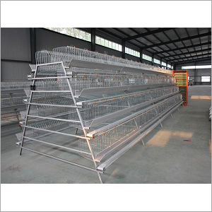 Poultry A Type Cage