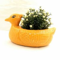 DUCK NEW POT