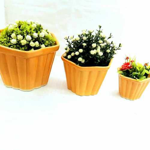 Angular  bonsai set of 3