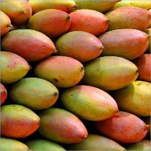 Fresh Totapuri Mango