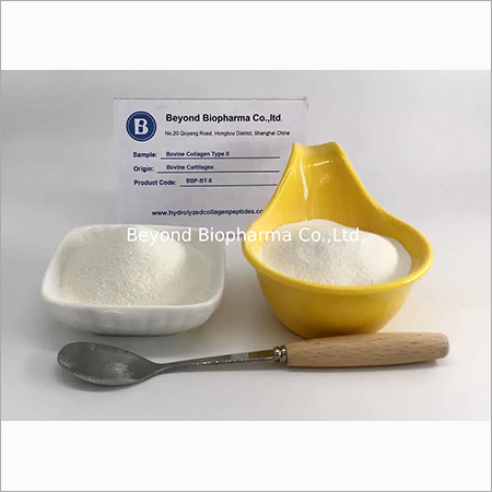 Bovine Type ii Collagen