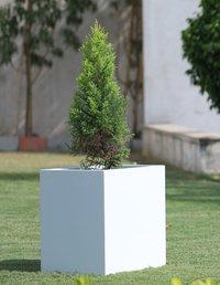 Fiberglass Garden Planters