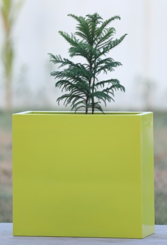 Yellow FRP Planters