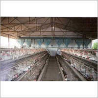 Layer Cage With Hopper Feeding System