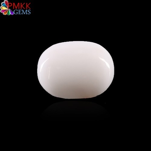Natural White Coral(WC022)