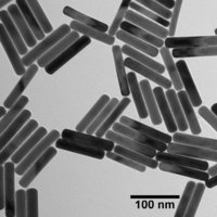 GOLD NANORODS BARE (CITRATE)