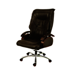 BMS-1002  Revolving Director Chair