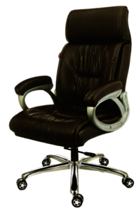 BMS-1004  Revolving Director Chair