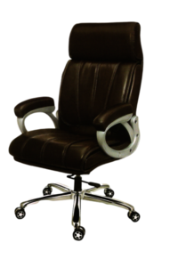 BMS-1006 Revolving Director Chair