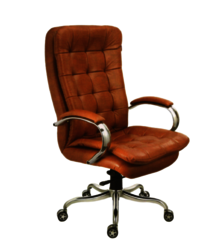 BMS-1007 Revolving Director Chair