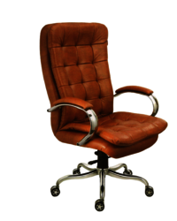 BMS-1007 Revolving Director Chair