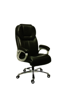 BMS-1013 Revolving Director Chair