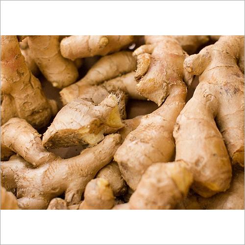 Raw Fresh Ginger