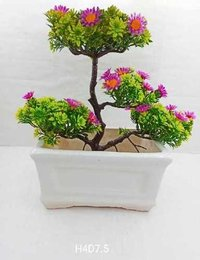 Square bonsai
