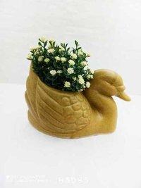 Duck new