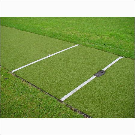 Turf Cricket Pitch