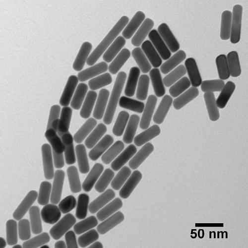 NANOXACT GOLD NANORODS-BARE (CITRATE)