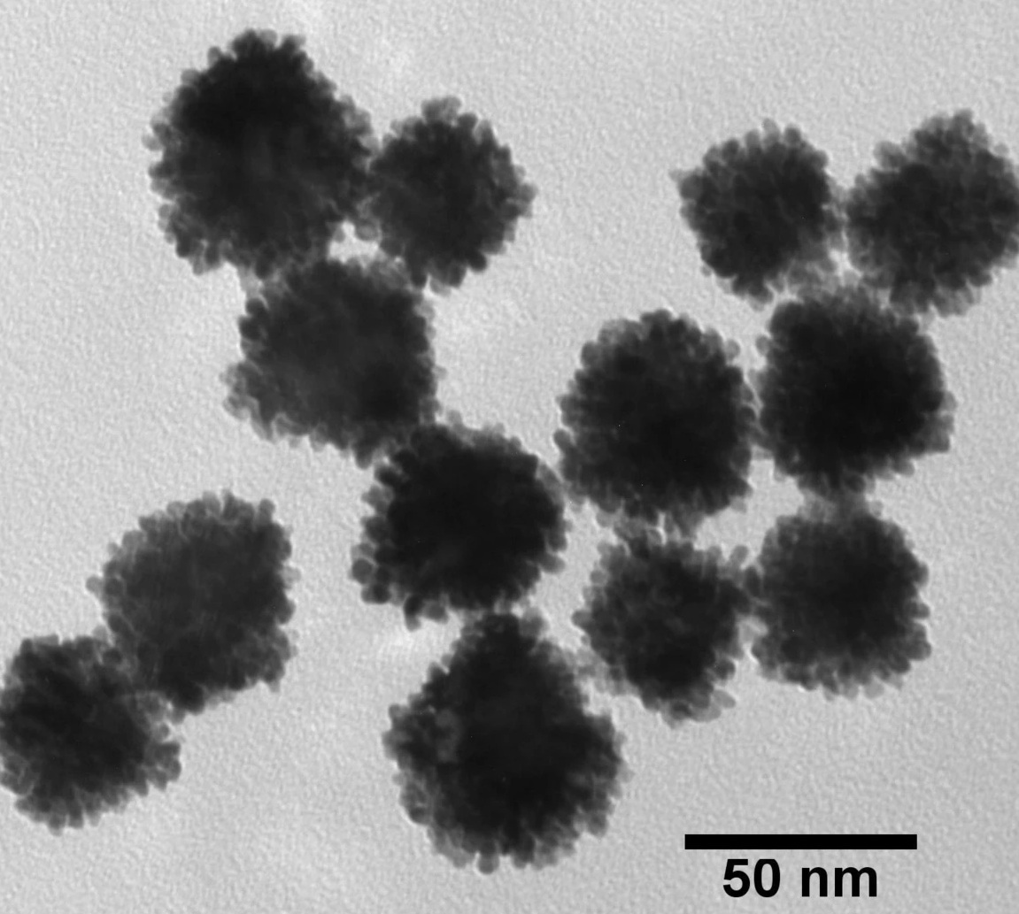 NANOXACT PLATINUM NANOPARTICLES-BARE (CITRATE)