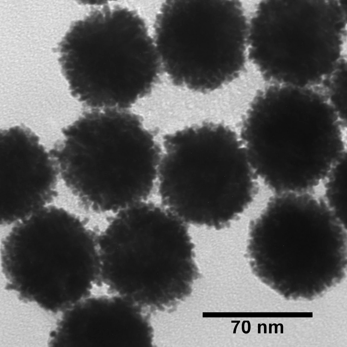 NANOXACT PLATINUM NANOPARTICLES-BARE (CITRATE)