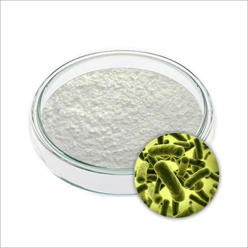 200 B CFU-G Lactobacillus Acidophilus Powder