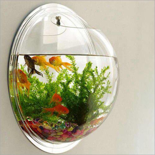 Acrylic Wall Mounted Fish Aquarium