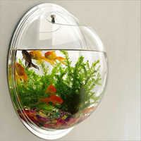 Acrylic Wall Mounted Fish Aquarium