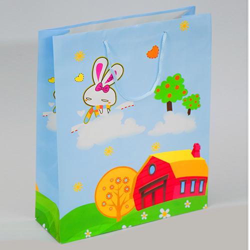 Designing Paper Carry Bag