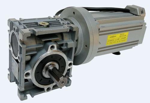 BLDC Worm Gear Motor
