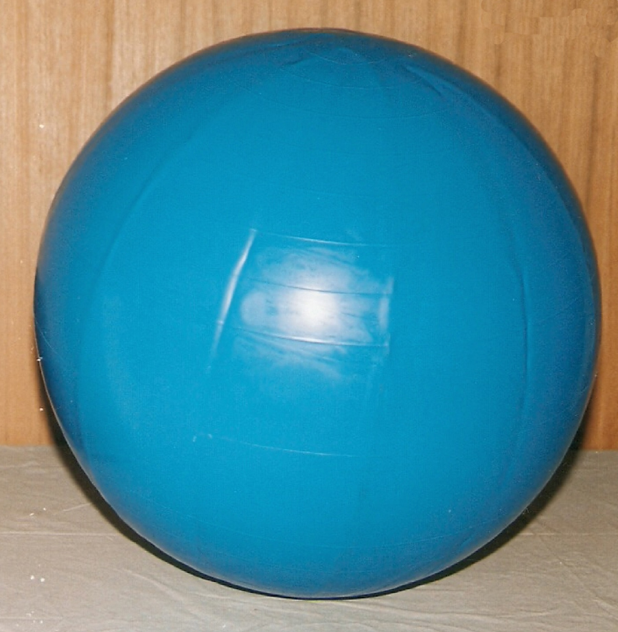 PHYSIO-GYMNIC BALLS (Set of 5 Therapy Balls, Italy)