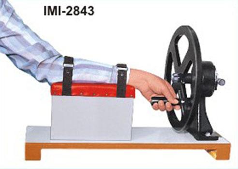 Imi 2843 Wrist Circumductior