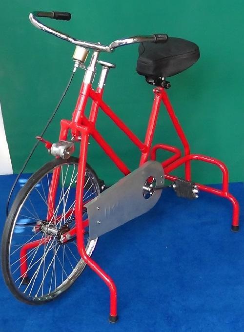 Imi-2885 Static Cycle Exerciser Adult