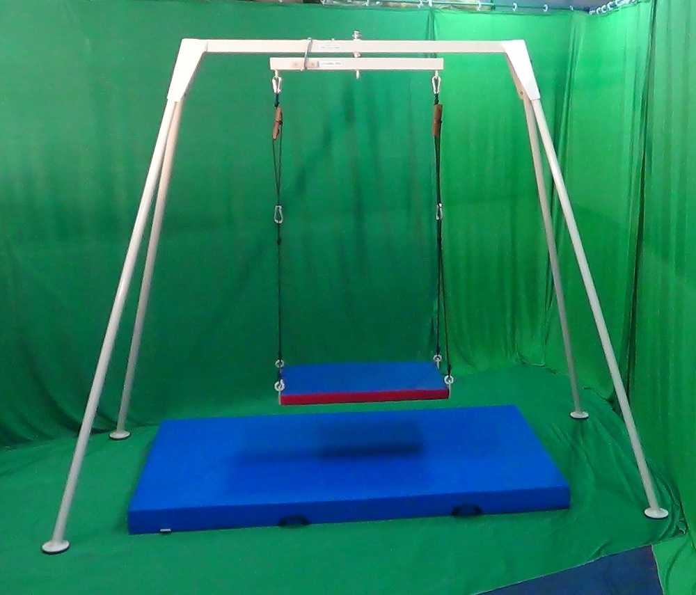 Vestibulator-swing System With 5 Swings