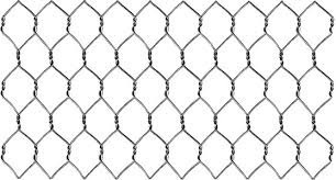 S.S Chicken Wire Mesh