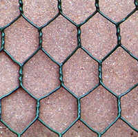 G.I Hexagonal Wire Mesh