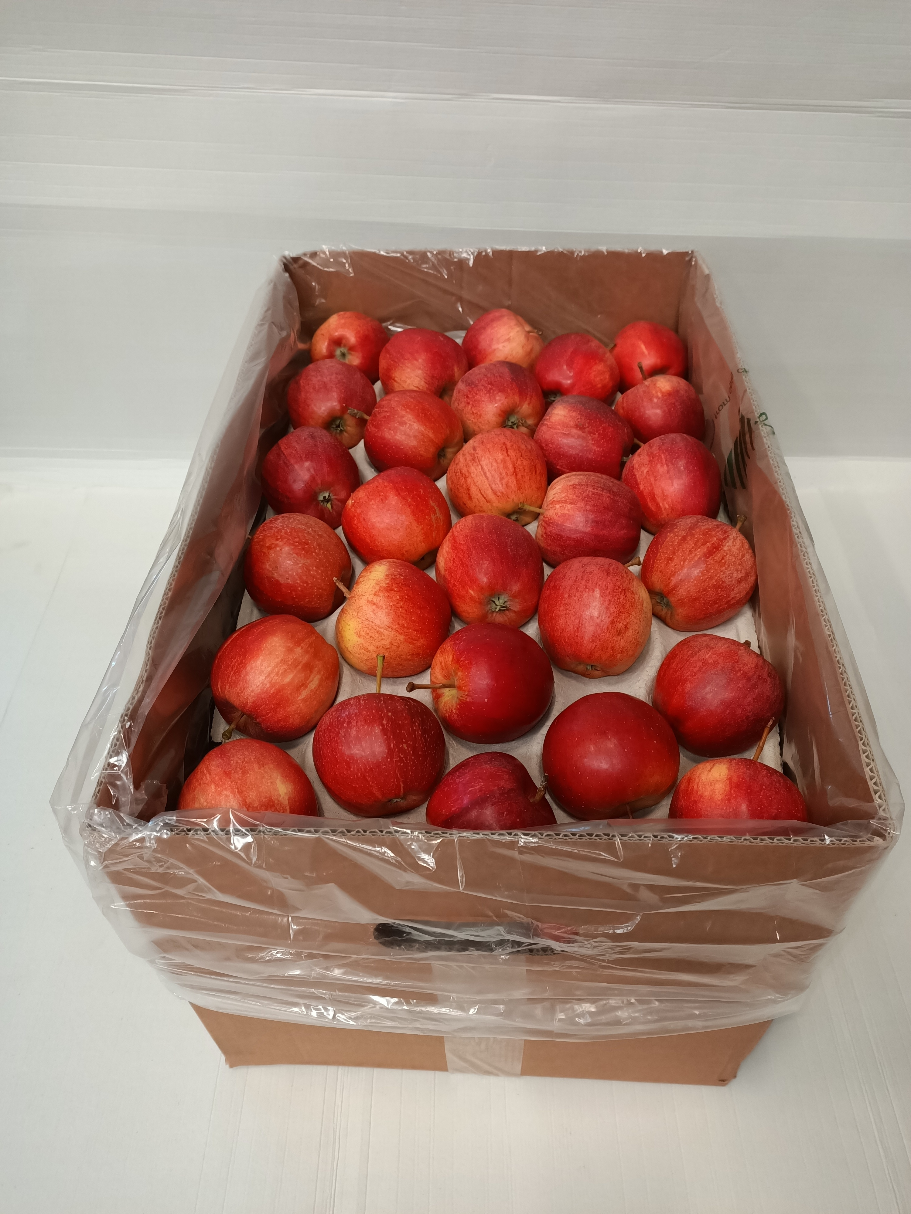 Fresh apple royal gala Chile